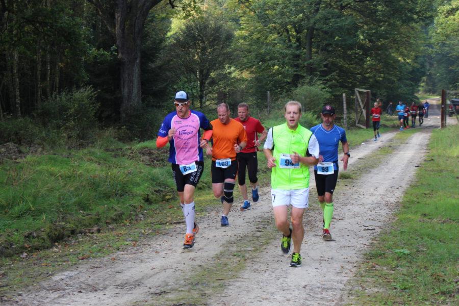 9. Reinhardswald Halbmarathon